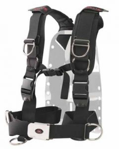 back-plate-and-harness